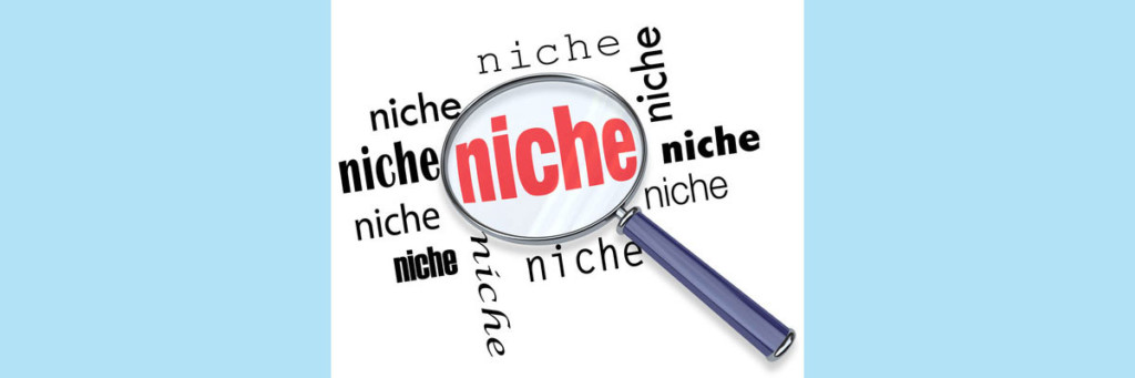 Selecting Your Online Magazine's Niche